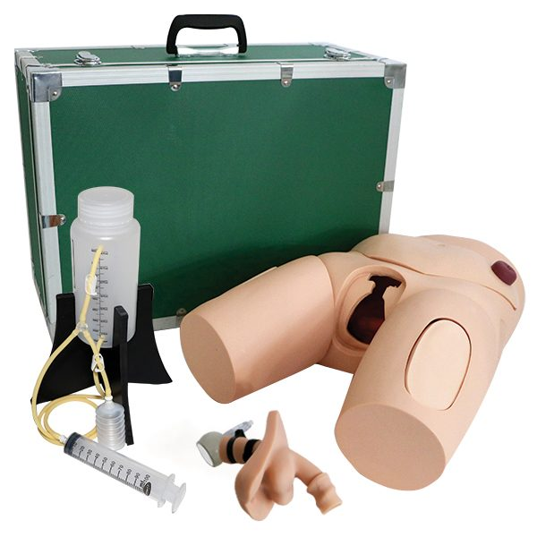 Vinyl Male Catheterization Simulator