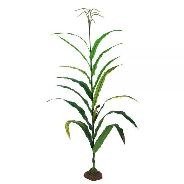 Corn Stalk Model