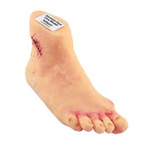 Geriatric Foot Care Model