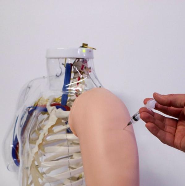 Upper Arm Intramuscular Sim