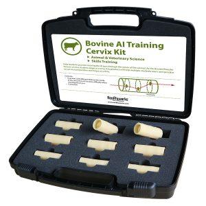 Bovine AI Cervix Training Kit