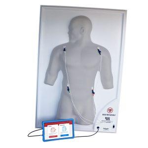ECG Simulator