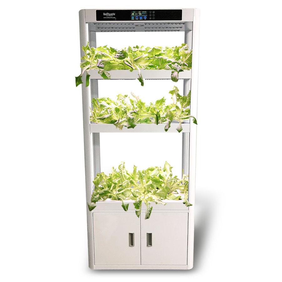 Plant Producer Educational Hydroponics System