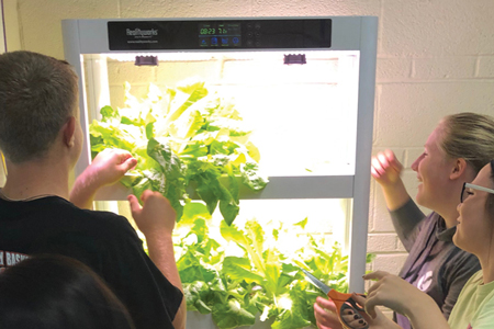Students using Realityworks' hydroponics system