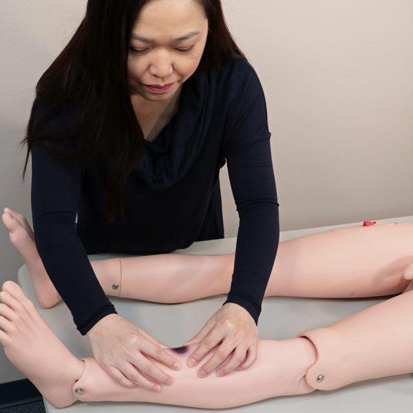 Closed Fracture Trauma Manikin bruise care