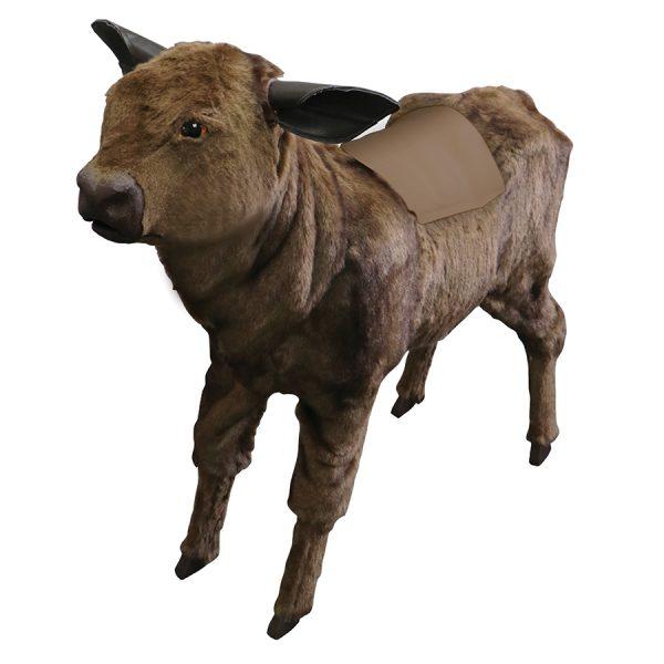 Calf Simulator