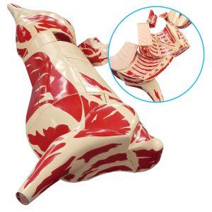 Butcher Beef Cuts Models