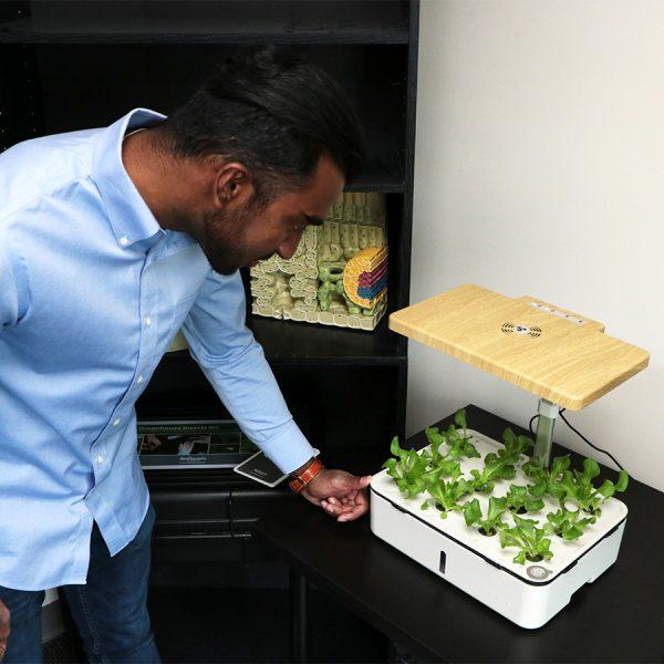 mini hydroponics