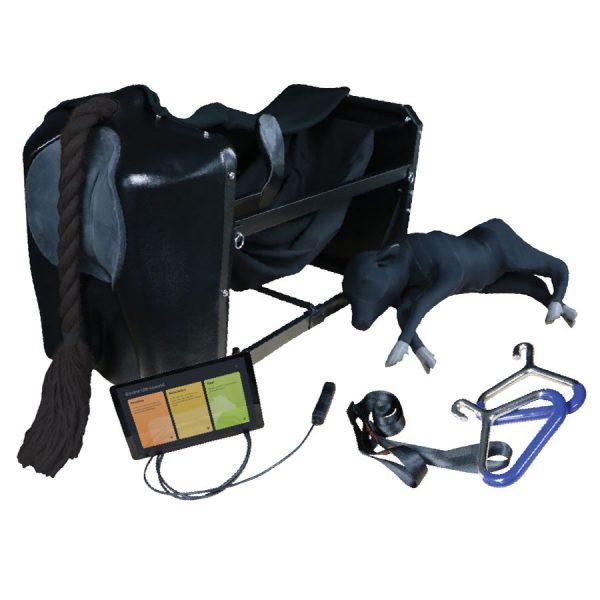 Bovine Birthing and Ultrasound Simulator